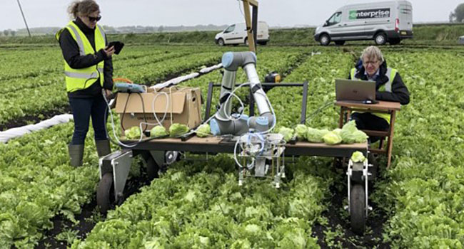 Agri-food Robot