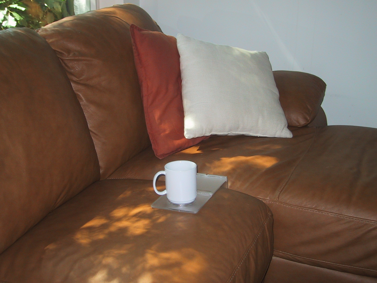 Couch Caddy