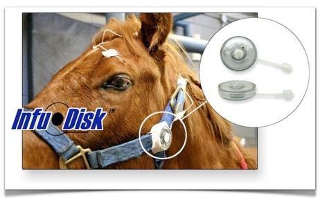 Infu-Disk™-Equine subpalpebral lavage.jpg