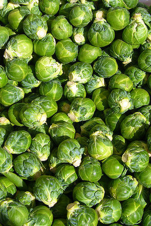 400px-Brussels_sprout_closeup.jpg
