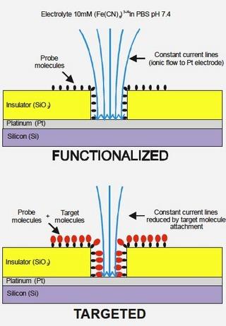 electrolyte.jpg