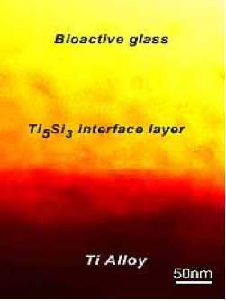 bioactive_glass.png
