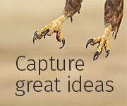 Capture Great Ideas