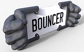 Bouncer Bumper