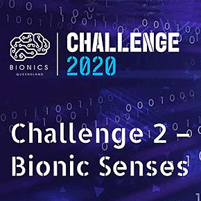 Bionic Senses
