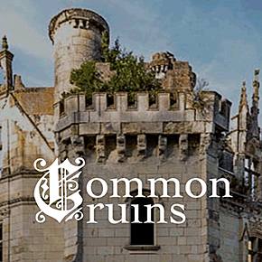Common Ruins Competition