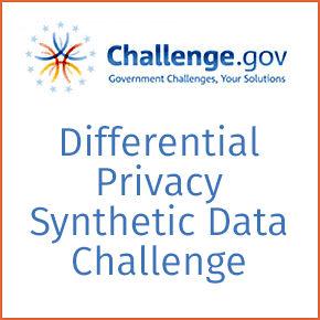 Differential Privacy Synthetic Data Challenge