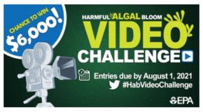 Harmful Algal Bloom Video Challenge