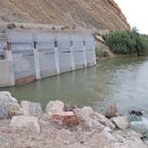 Improving Fish Exclusion from Water Diversions and Intakes