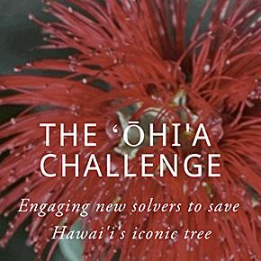 The ʻŌhi'a Challenge