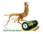 Building Batteries from Plant Roots
