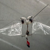 DelFly Nimble Insect-Inspired Drone