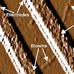 Genetically Modified Bacteria Build Nanowires