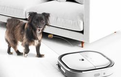 Invention: Dog Vacuum