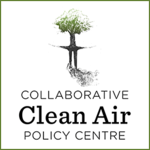 Open Air Solutions for India's Pollution Problem